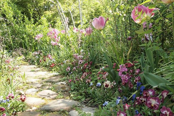北川村 モネ水の庭5