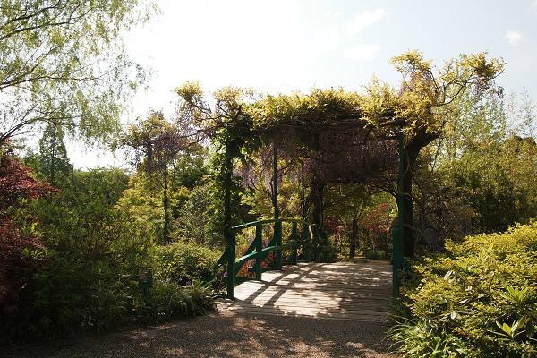 北川村 モネ水の庭1