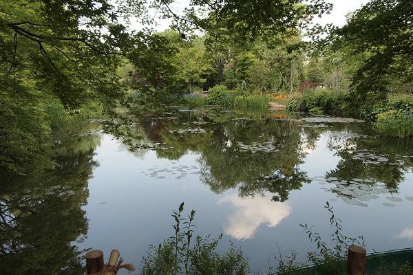 北川村 モネ水の庭10