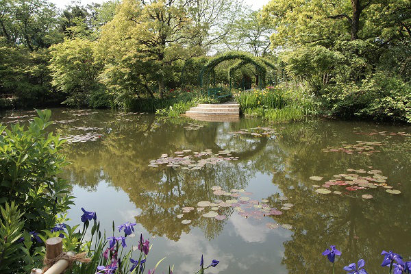 北川村 モネ水の庭13