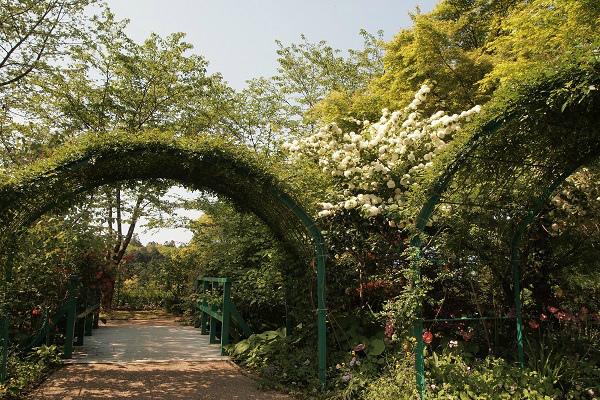 北川村 モネ水の庭7
