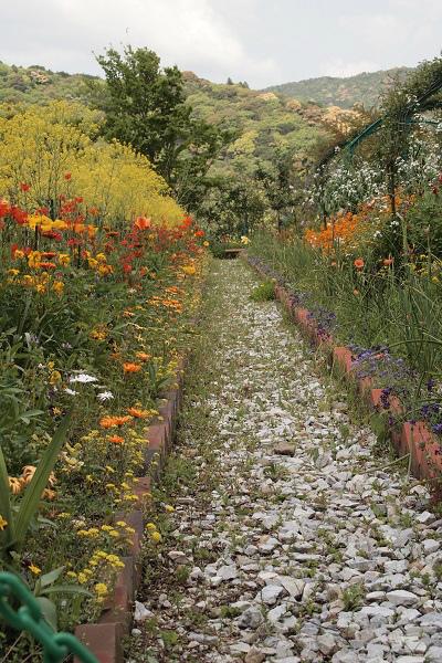 北川村 モネ花の庭3