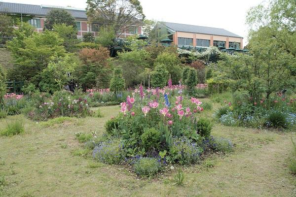 北川村 モネ花の庭11