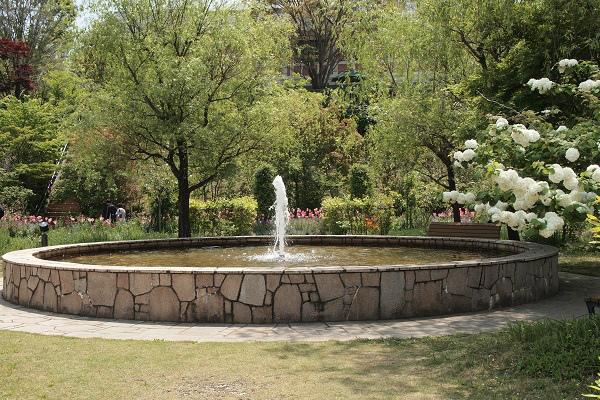 北川村 モネ花の庭9