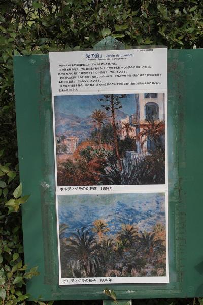 北川村 モネ光の庭1
