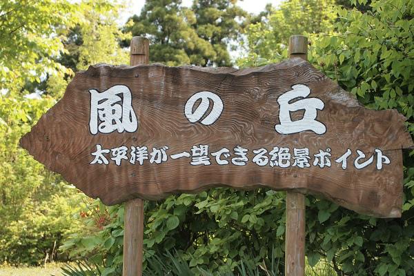 北川村 モネ風の丘1